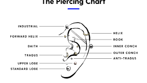 Daith Piercing 101 Everything You Need To Know
