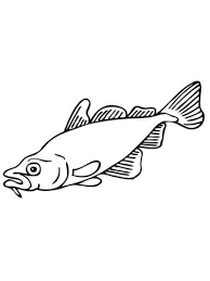 Small Picture Carp Fish coloring page Free Printable Coloring Pages