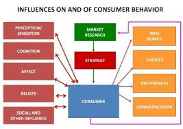 Consumer Behavior Chart Difference Between Perception And Sensation In Consumer