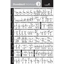 Dumbbell Exercise Poster Vol 3 Laminated Workout Strength Training Chart Build Muscle Tone Tighten Home Gym Weight Lifting Routine Body