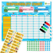 D Fantix Magnetic Responsibility Chart Chore Chart For
