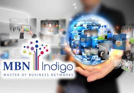 mbn indigo master of business networks indigo holding master of business networks