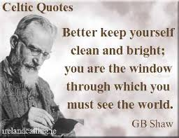 George Bernard Shaw Quotes New George Bernard Shaw Quotes On Education Ireland Calling