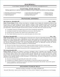 It Security Analyst Resume Sample Igniteresumes Com