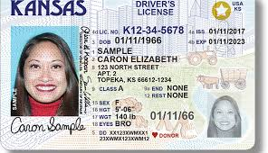 What Know You Need To Guide Real Id