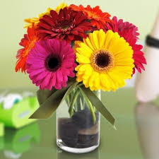 florist in tulsa flower delivery a beautiful ortment of brightly colored gerbera daisies lively
