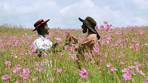 the color purple movie review roger ebert