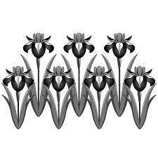 商用フリー無料イラスト5月端午の節句菖蒲しょうぶあやめの花