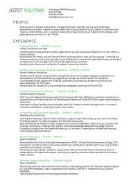 Cv London Project Manager Rates Philippines Resume Examples By Real People