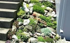 indoor rock garden ideas. Small Rockery Garden Ideas Rock Gardening Super River Indoor .