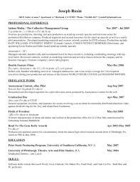Example Of A Good Resume Paper Buy A Resumes Savebtsaco 16