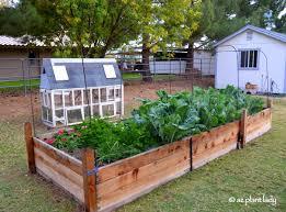a broken leg and a vegetable garden