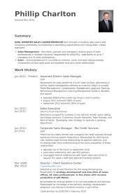District Sales Manager Resume Samples Visualcv Resume Samples Database