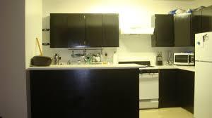 Ikea Kitchen Cabinet Shelves Ikea Kitchen Shelf Unit Phidesignus
