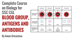 Blood Group Antigens And Antibodies Complete Course On Biology For Ssc Cgl By Aman Srivastava