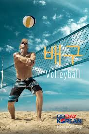 Write about your favorite sport volleyball
