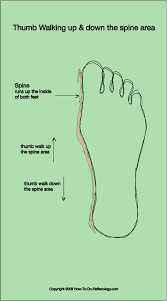 Foot Reflexology Complete How To Techniques Step By Step