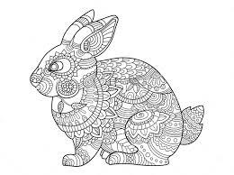 Small Picture Rabbit zentangle coloring page Art Pinterest Rabbit Cricut