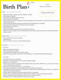 Birth Plan Download Birth Plan Template Business Mentor