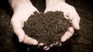 Решения для сельского хозяйства: Добро пожаловать на сайт ...