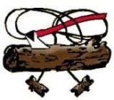 Image result for wood badge beads