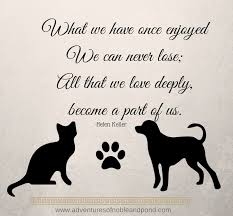 Loss Of A Pet Quote Loss Of A Pet Quotes Lovely What We Have Ce Enjoyed Quote Helen 12