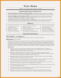 Marketing Executive Resume Sample Marketing Executive Resume Examples Free Resume Examples 41
