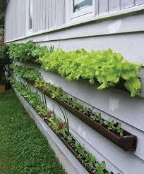 Small Picture Best Of Small Vegetable Garden Ideas Creative Vertical Garden Design