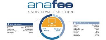 Partnering For Growth In It Financial Management Anafee