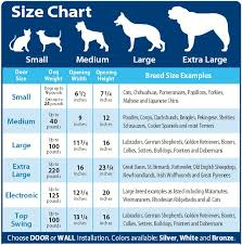 Rottweiler Puppy Growth Chart Rottweiler Puppy Growth Chart Dogs Breeds And Everything