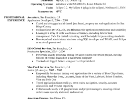 Online Resume Services Cute Awesome Custom 10