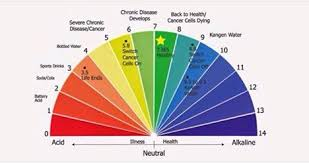 Carbs And Protein Chart Choosing The Safest Fats Carbs And Proteins