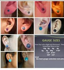 biggest gauge size the 14 weirdest things people put in their gauges stretched ears