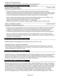 San Diego Resume Services Resume Examples