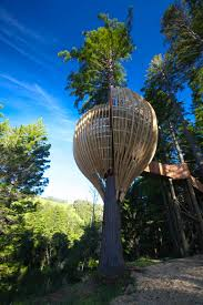 Tree House Architecture Yellow Treehouse Restaurant In Auckland New Zealand