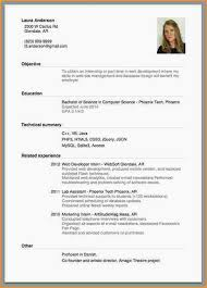 Curriculum Vitae Sample Job Application Alternative Photos The