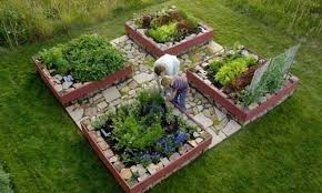 Small Picture How To Plan A Vegetable Garden Vegetable Garden Container Ideas