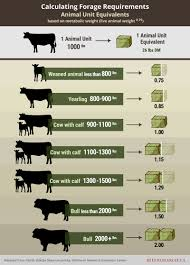 Grazing Management Beef Cattle Research Council