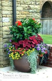 outdoor planter ideas large outdoor planter ideas best outdoor flower pots ideas on planting flowers large summer container flowers outside planter ideas