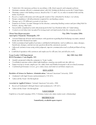Resume Advice For Career Changers Free Resume Example And