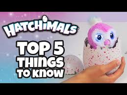 What Are Hatchimals How Do They Work And Where Can You Find T
