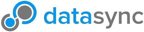 Data Sync Datasync Logo Datasync Corporation