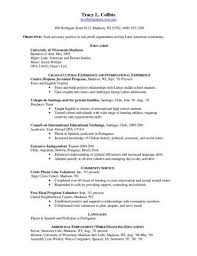 Resume Example International Experience Unique Legal Resumes ...