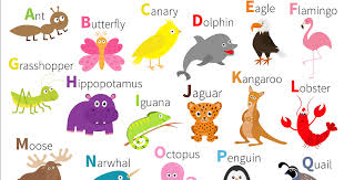Song to help you learn the nato phonetic code e.g. Help Kids Learn Their Abcs With These Fun Abc Songs