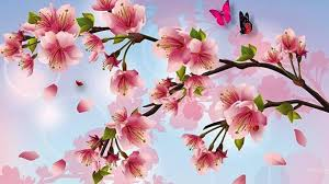 amusing cherry blossom painting 25 wallpaper 1