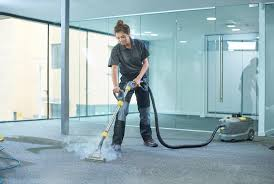 Professional Carpet Cleaning Auckland Rug Cleaners