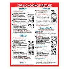 Infant Choking Chart Cpr Choking First Aid Instructions Poster Infant Child And Adult Laminat Ebay