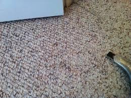 Nylon Berber Carpet Colors — Interior Home Design Popular Berber
