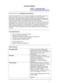 100 Portal Architect Resume Sharepoint Architect Resume Doc
