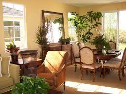 indoor plants myths mini